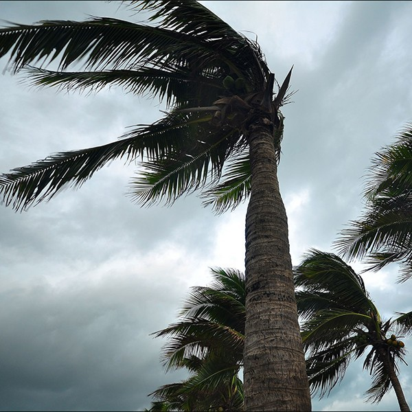 Hurricane Irma impacts Gift Cards